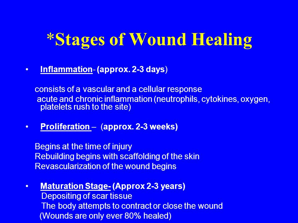Systemic Factors that affect Wound Healing Nutritional Status Vascular Status Metabolic Factors Immunological Factors Age Medications (Steroids, etc) Genetic