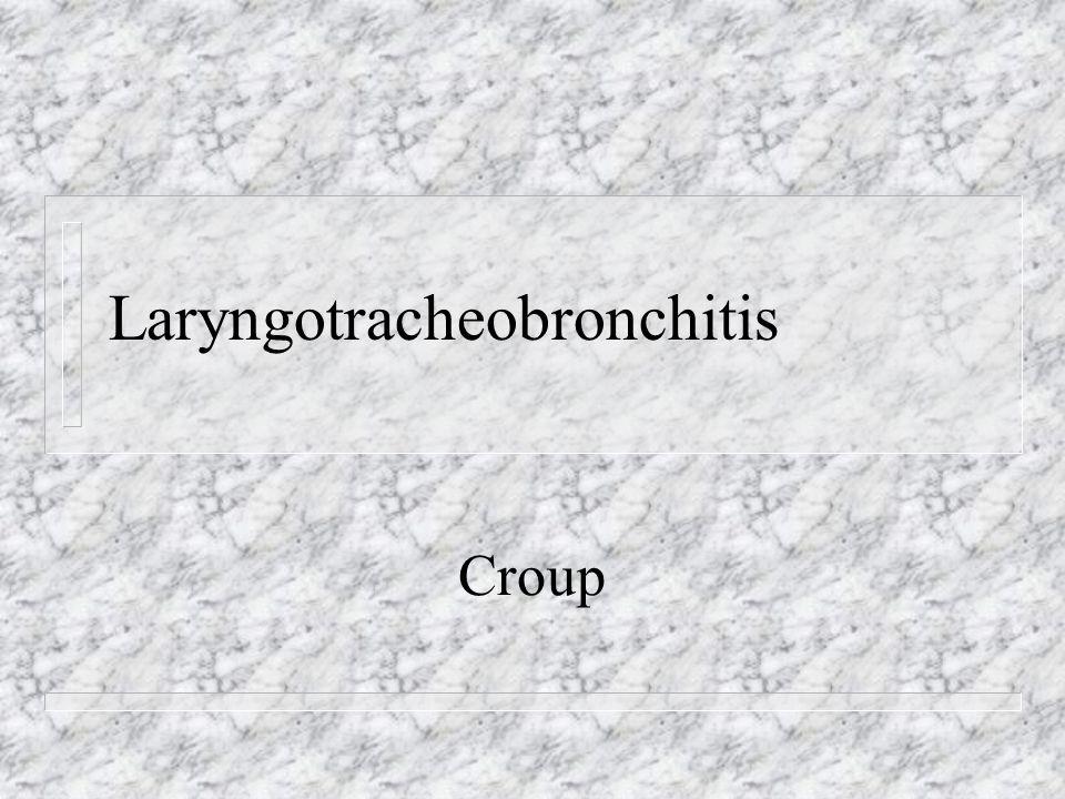 Laryngotracheobronchitis Croup