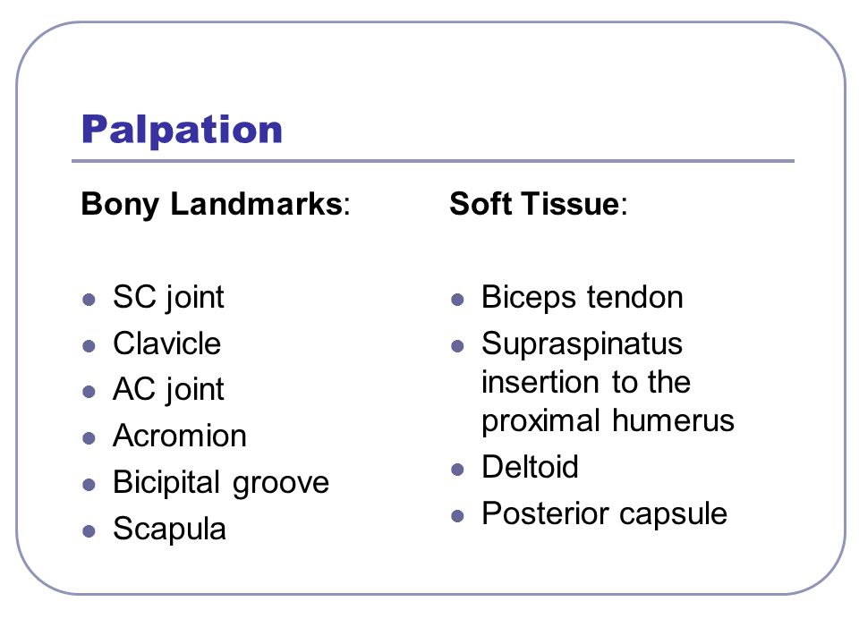 Palpation Bony Landmarks: SC joint Clavicle AC joint Acromion Bicipital groove Scapula Soft Tissue: Biceps tendon Supraspinatus insertion to the proxi