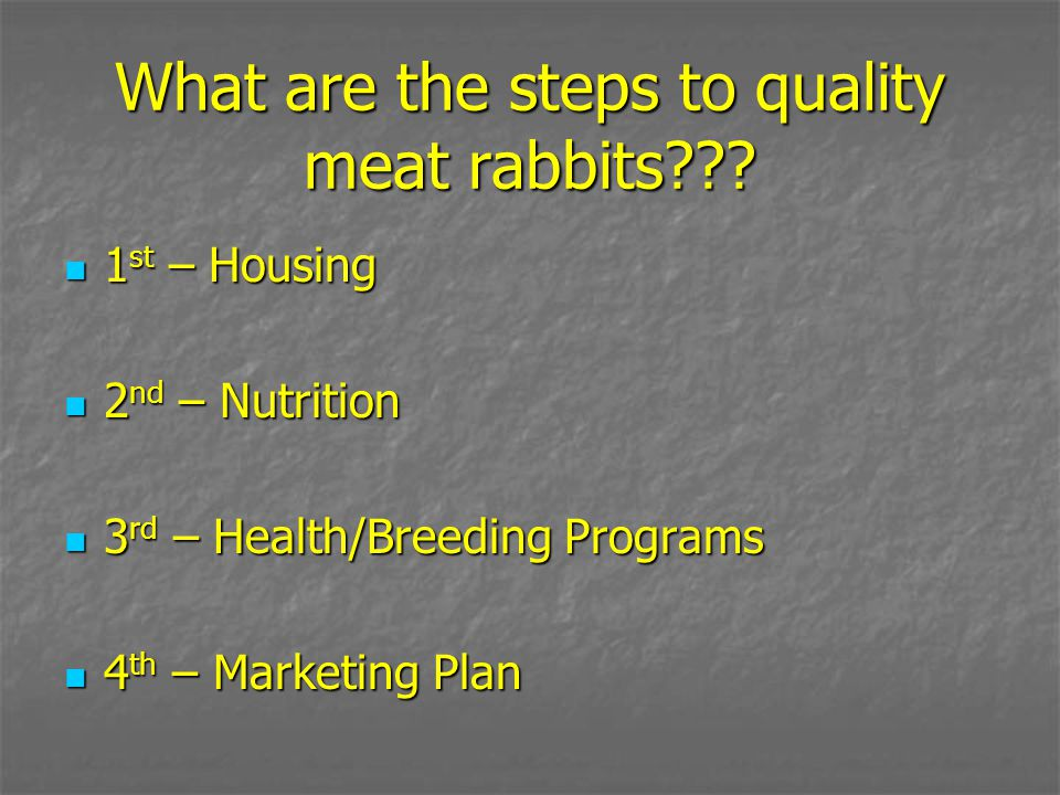 What are the steps to quality meat rabbits??? 1 st – Housing 1 st – Housing 2 nd – Nutrition 2 nd – Nutrition 3 rd – Health/Breeding Programs 3 rd – H