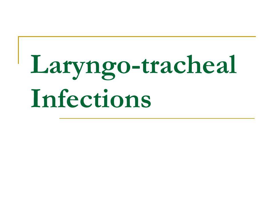 Laryngo-tracheal Infections