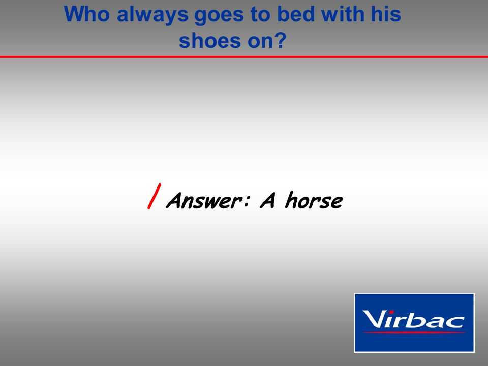 Who always goes to bed with his shoes on / Answer: A horse