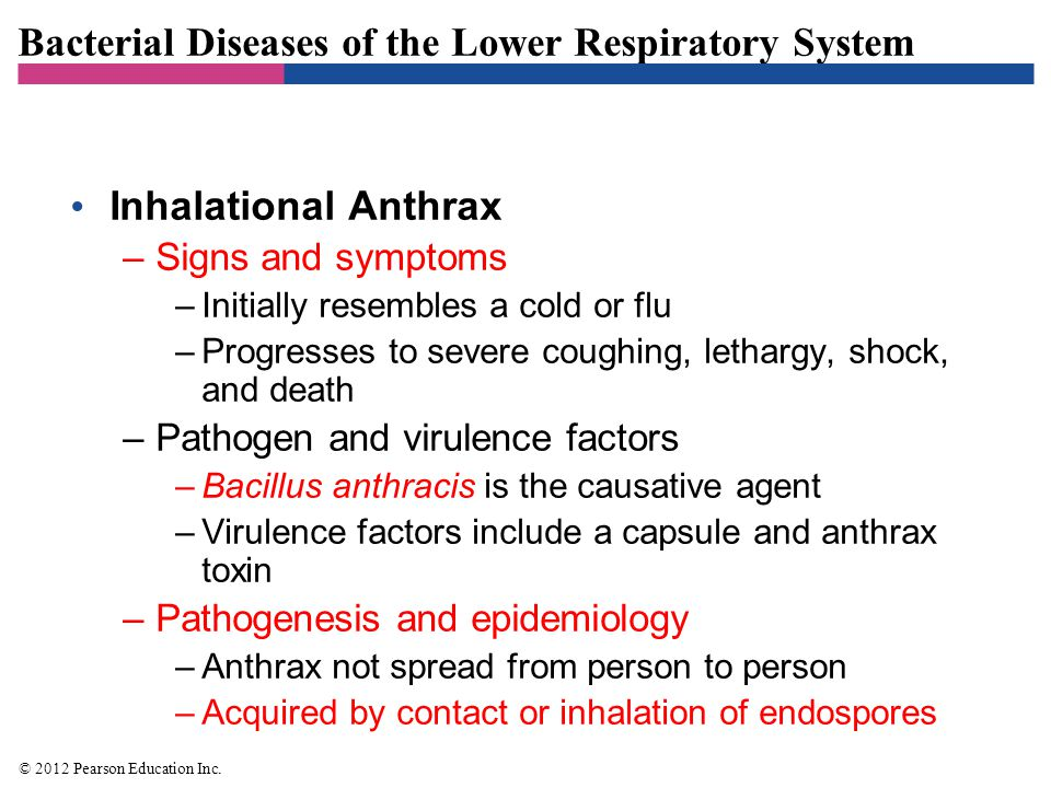Bacterial Diseases of the Lower Respiratory System Inhalational Anthrax –Signs and symptoms –Initially resembles a cold or flu –Progresses to severe c