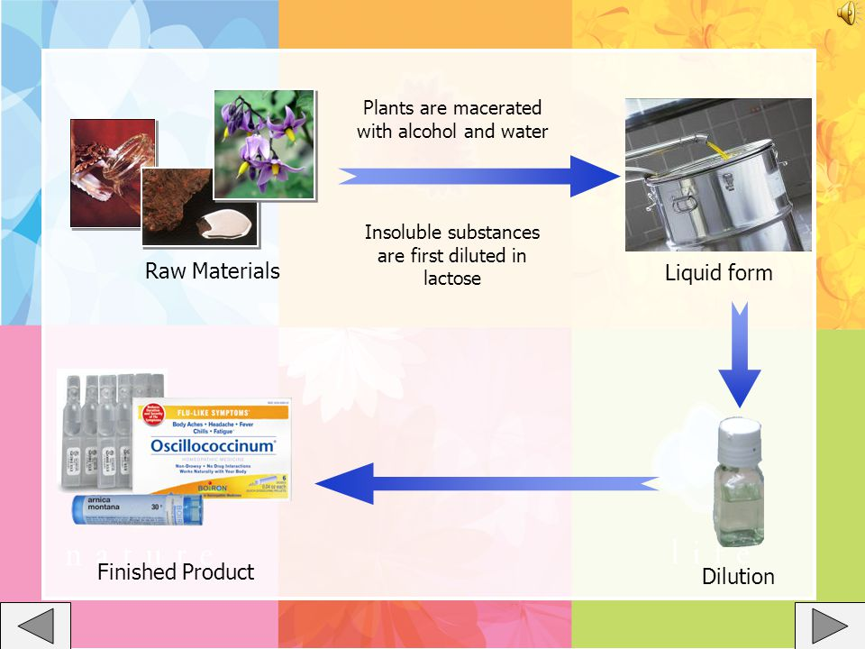 Raw Materials Dilution Insoluble substances are first diluted in lactose Plants are macerated with alcohol and water Liquid form Finished Product