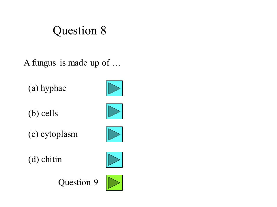 Question 8 A fungus is made up of … (a) hyphae (b) cells (c) cytoplasm (d) chitin Question 9