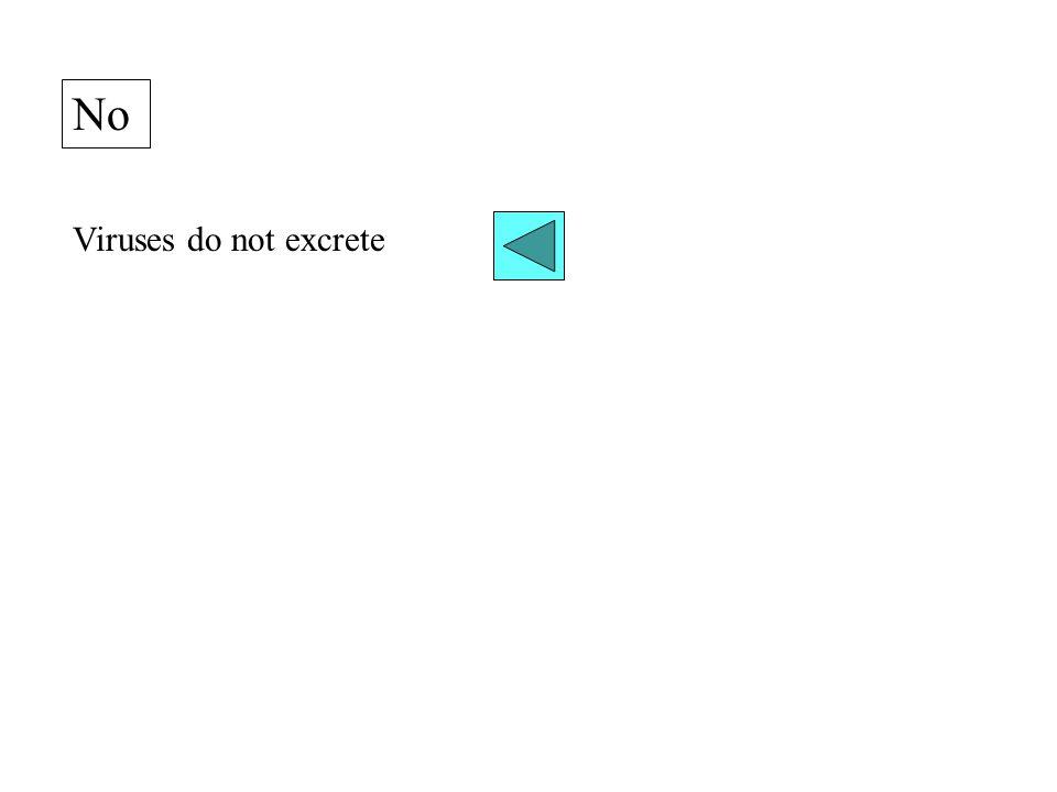 No Viruses do not excrete