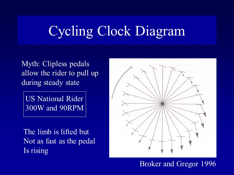 Cycling Clock Diagram Broker and Gregor 1996 Myth: Clipless pedals allow the rider to pull up during steady state US National Rider 300W and 90RPM The