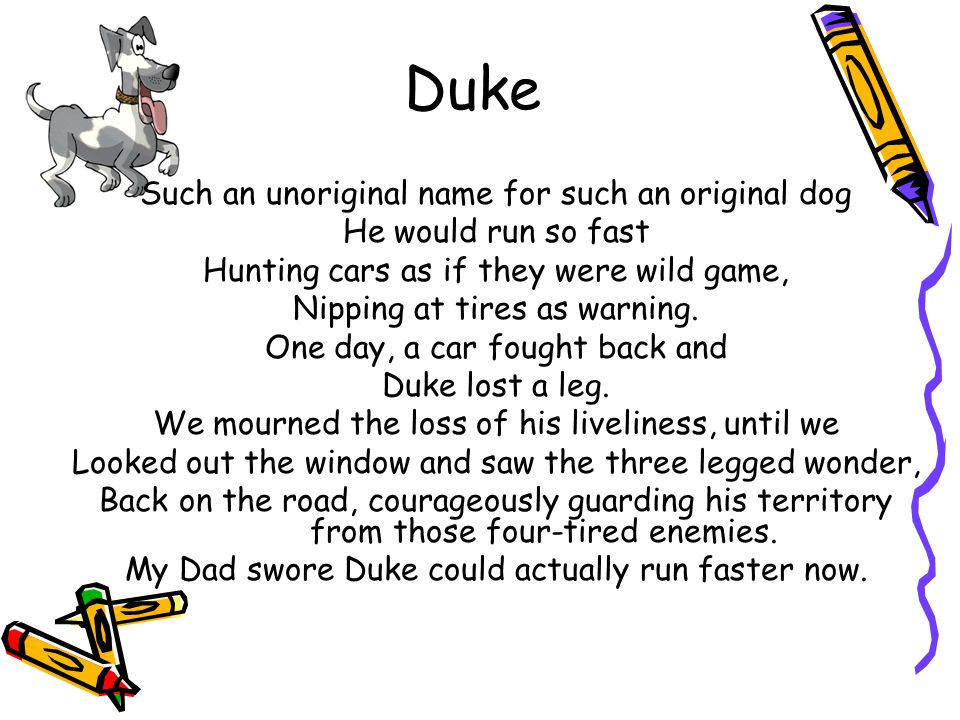 Duke Such an unoriginal name for such an original dog He would run so fast Hunting cars as if they were wild game, Nipping at tires as warning. One da
