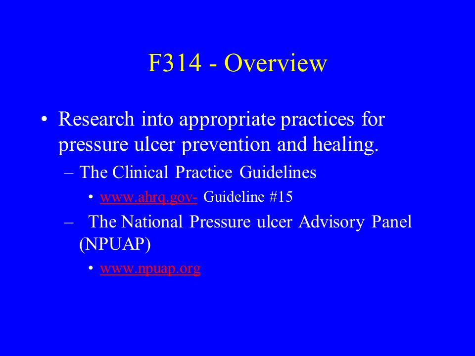 F314 - Overview Research into appropriate practices for pressure ulcer prevention and healing. –The Clinical Practice Guidelines www.ahrq.gov- Guideli
