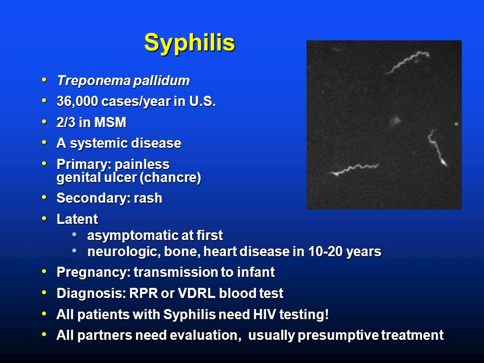 Syphilis Treponema pallidum Treponema pallidum 36,000 cases/year in U.S. 36,000 cases/year in U.S. 2/3 in MSM 2/3 in MSM A systemic disease A systemic