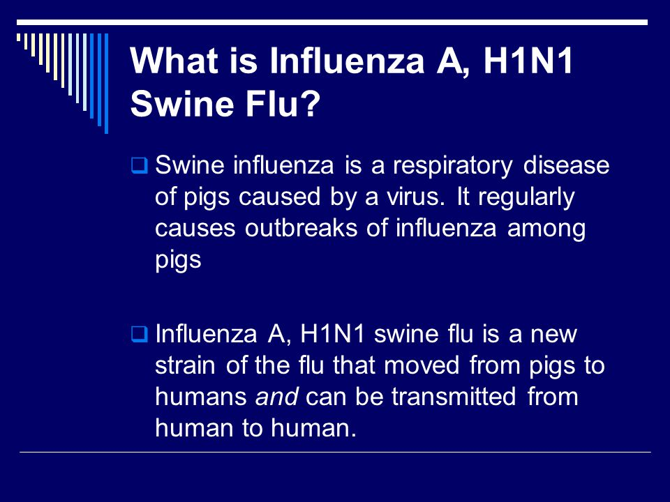 Influenza A, H1N1 (swine flu)  Swine flu is different from seasonal flu because:  It is a new strain of the virus  Humans do not have an immunity from it  Immunizations received last fall or this winter do not offer protection against the H1N1 swine flu