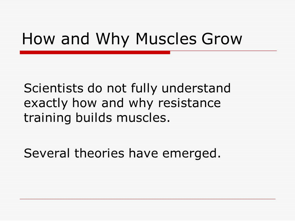 How and Why Muscles Grow Scientists do not fully understand exactly how and why resistance training builds muscles. Several theories have emerged.