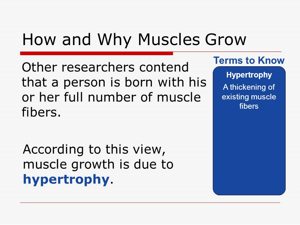 How and Why Muscles Grow Other researchers contend that a person is born with his or her full number of muscle fibers. Hypertrophy A thickening of exi
