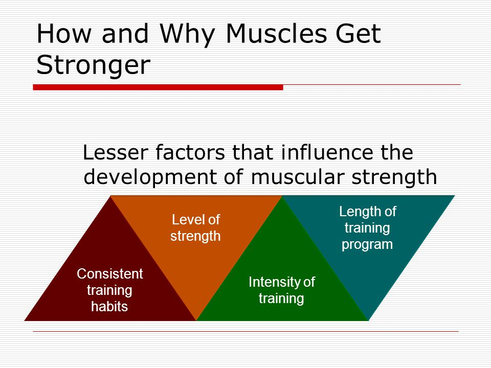 How and Why Muscles Get Stronger Lesser factors that influence the development of muscular strength Consistent training habits Level of strength Inten