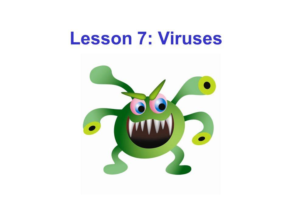 Lesson 7: Viruses