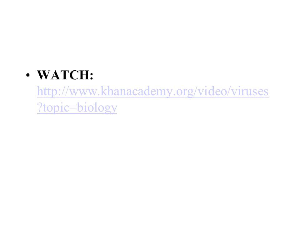 WATCH: http://www.khanacademy.org/video/viruses ?topic=biology http://www.khanacademy.org/video/viruses ?topic=biology