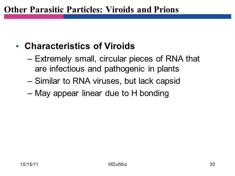 Other Parasitic Particles: Viroids and Prions Characteristics of Viroids –Extremely small, circular pieces of RNA that are infectious and pathogenic i