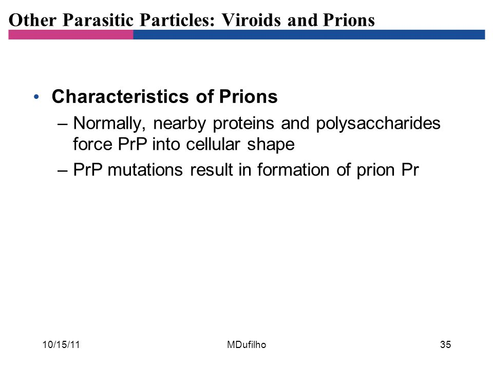 Other Parasitic Particles: Viroids and Prions Characteristics of Prions –Normally, nearby proteins and polysaccharides force PrP into cellular shape –PrP mutations result in formation of prion Pr 10/15/11MDufilho35