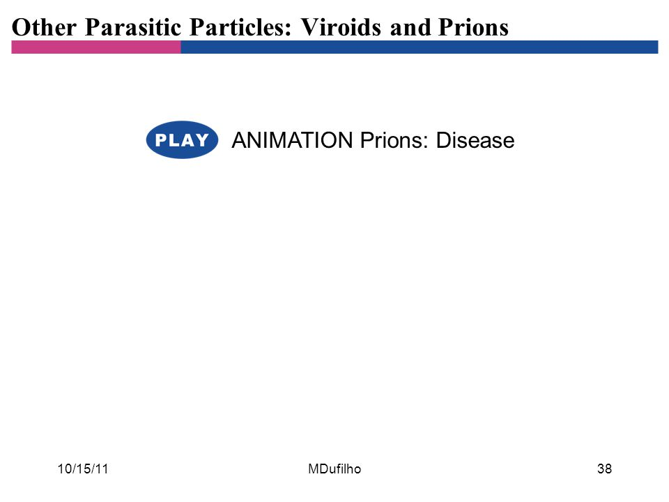 Other Parasitic Particles: Viroids and Prions ANIMATION Prions: Disease 10/15/11MDufilho38