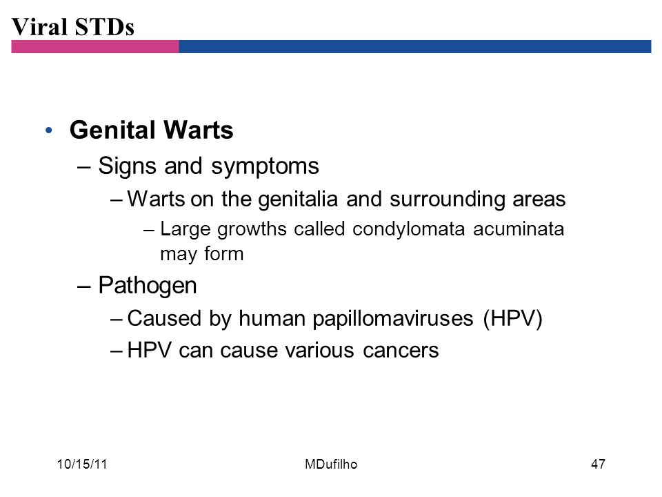 Viral STDs Genital Warts –Signs and symptoms –Warts on the genitalia and surrounding areas –Large growths called condylomata acuminata may form –Patho