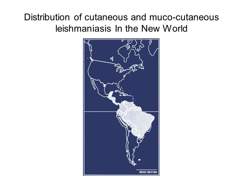 Distribution of cutaneous and muco-cutaneous leishmaniasis In the New World