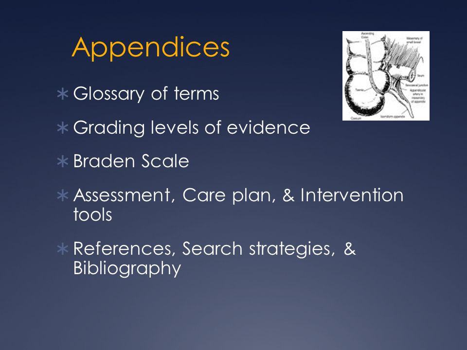 Appendices  Glossary of terms  Grading levels of evidence  Braden Scale  Assessment, Care plan, & Intervention tools  References, Search strategi