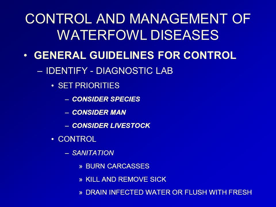 CONTROL AND MANAGEMENT OF WATERFOWL DISEASES GENERAL GUIDELINES FOR CONTROL –IDENTIFY - DIAGNOSTIC LAB SET PRIORITIES –CONSIDER SPECIES –CONSIDER MAN –CONSIDER LIVESTOCK CONTROL –SANITATION »BURN CARCASSES »KILL AND REMOVE SICK »DRAIN INFECTED WATER OR FLUSH WITH FRESH