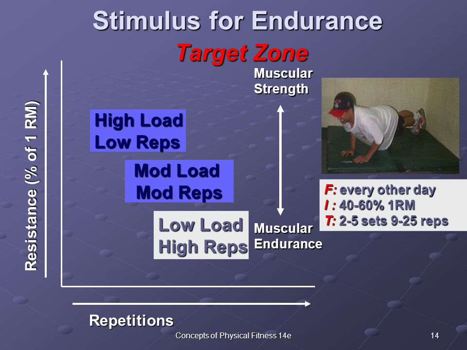 14Concepts of Physical Fitness 14e Stimulus for Endurance Target Zone F: every other day I : 40-60% 1RM T: 2-5 sets 9-25 reps Repetitions Resistance (% of 1 RM) Low Load High Reps Muscular Strength Muscular Endurance High Load Low Reps Mod Load Mod Reps