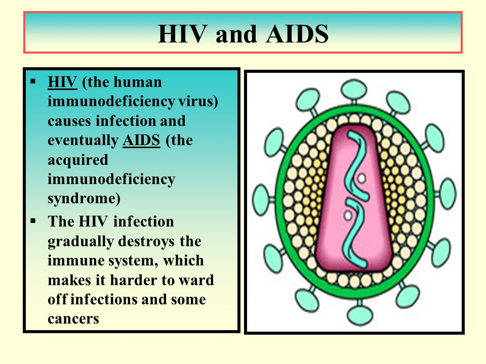 HIV and AIDS  HIV (the human immunodeficiency virus) causes infection and eventually AIDS (the acquired immunodeficiency syndrome)  The HIV infection gradually destroys the immune system, which makes it harder to ward off infections and some cancers