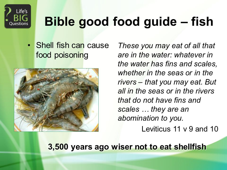 Bible good food guide – fish Shell fish can cause food poisoning 3,500 years ago wiser not to eat shellfish These you may eat of all that are in the water: whatever in the water has fins and scales, whether in the seas or in the rivers – that you may eat.