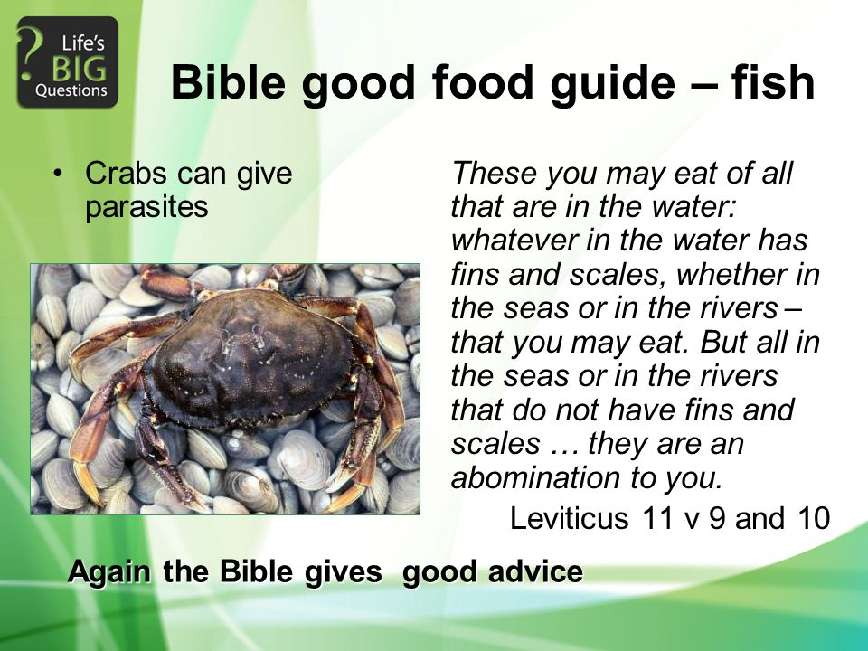 Bible good food guide – fish Crabs can give parasites These you may eat of all that are in the water: whatever in the water has fins and scales, whether in the seas or in the rivers – that you may eat.