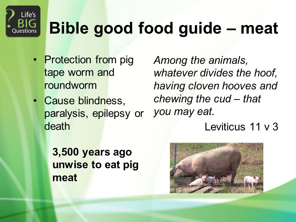 Bible good food guide – meat Protection from pig tape worm and roundworm Cause blindness, paralysis, epilepsy or death Among the animals, whatever div