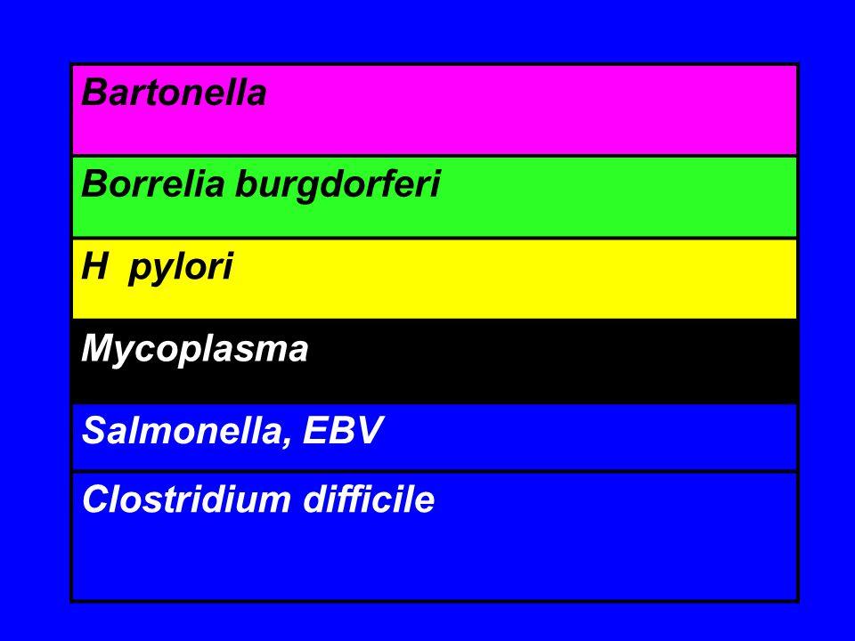 Bartonella Borrelia burgdorferi H pylori Mycoplasma Salmonella, EBV Clostridium difficile