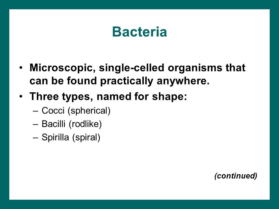 Bacteria Microscopic, single-celled organisms that can be found practically anywhere. Three types, named for shape: –Cocci (spherical) –Bacilli (rodli
