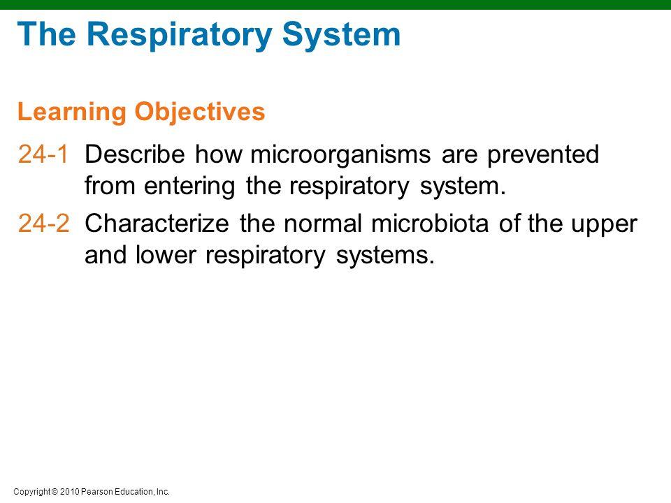 Copyright © 2010 Pearson Education, Inc. The Pathogenesis of Tuberculosis Figure 24.9