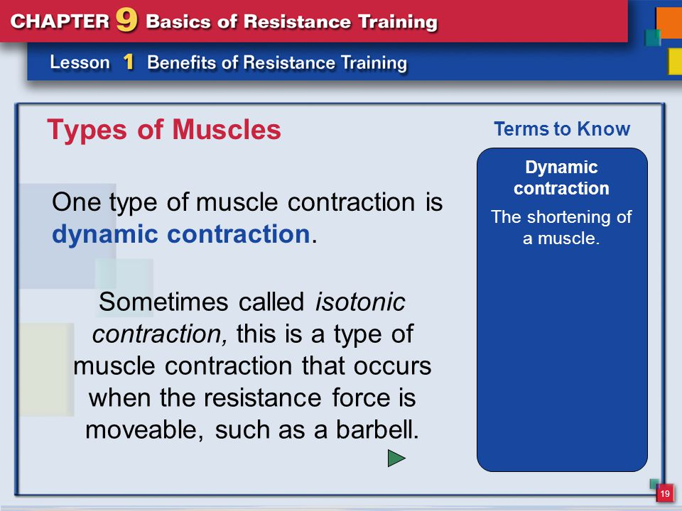 20 Types of Muscles A second kind of muscle contraction is static contraction.