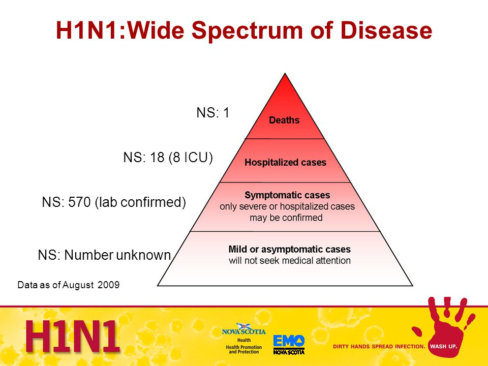 H1N1:Wide Spectrum of Disease NS: 1 NS: 570 (lab confirmed) NS: 18 (8 ICU) NS: Number unknown Data as of August 2009