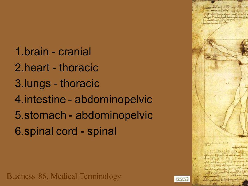 Business 86, Medical Terminology RUQ, RLQ, LUQ, LLQ 1.