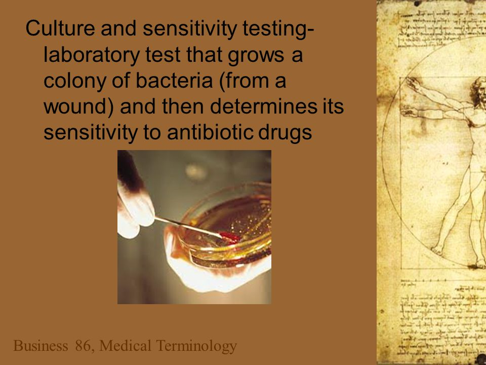 Business 86, Medical Terminology Culture and sensitivity testing- laboratory test that grows a colony of bacteria (from a wound) and then determines i
