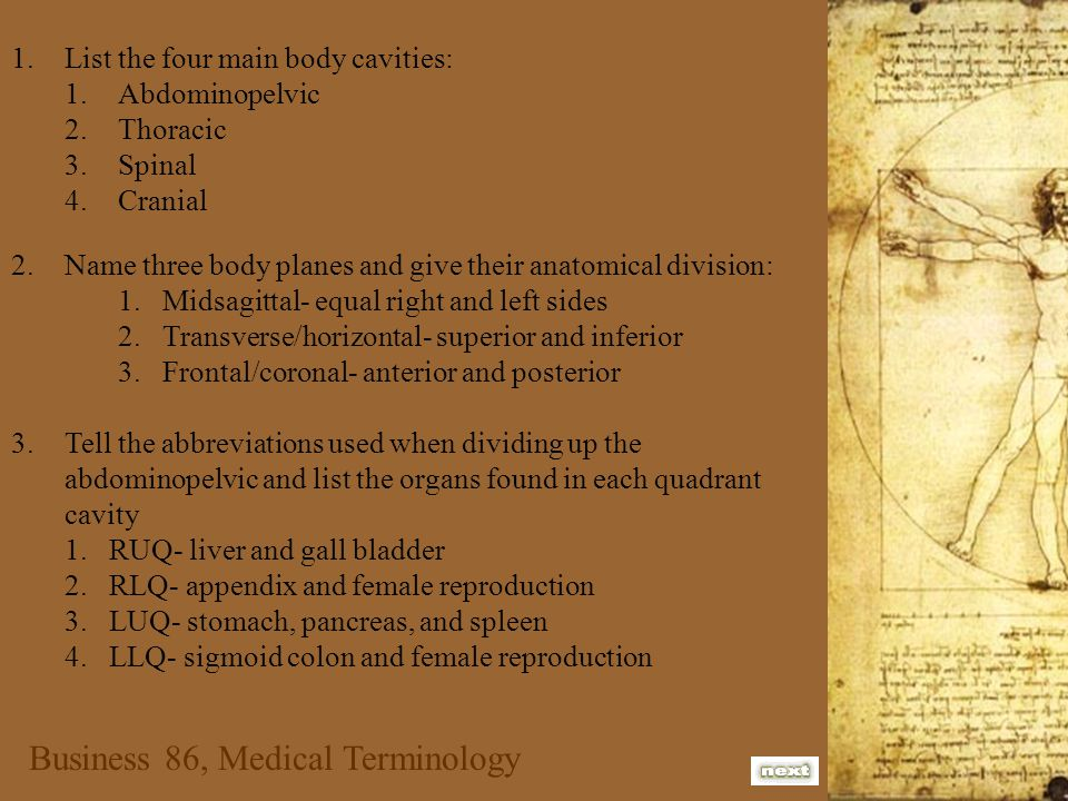Business 86, Medical Terminology 1.List the four main body cavities: 1.Abdominopelvic 2.Thoracic 3.Spinal 4.Cranial 2.Name three body planes and give their anatomical division: 1.