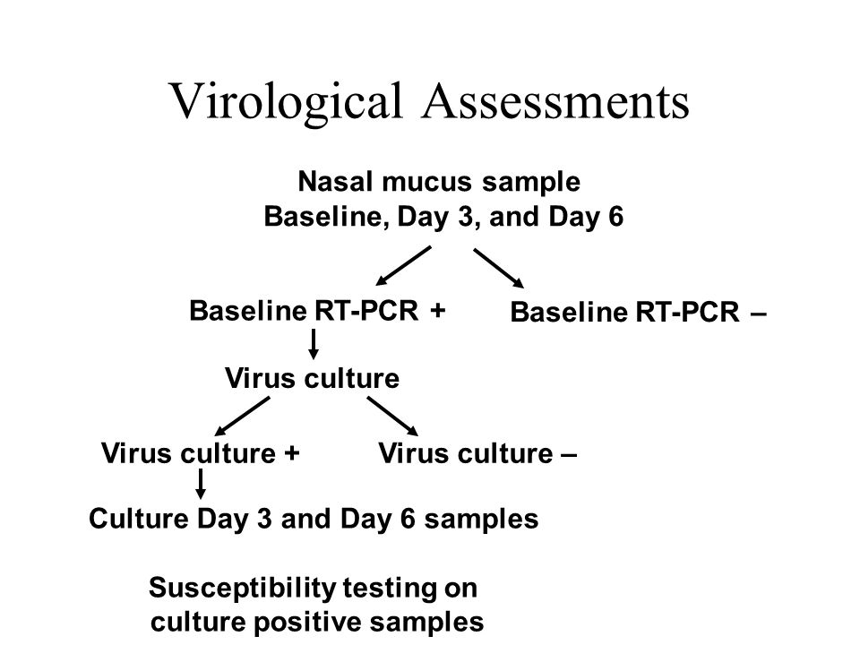 Virological Assessments Nasal mucus sample Baseline, Day 3, and Day 6 Baseline RT-PCR + Baseline RT-PCR – Virus culture Virus culture +Virus culture – Culture Day 3 and Day 6 samples Susceptibility testing on culture positive samples