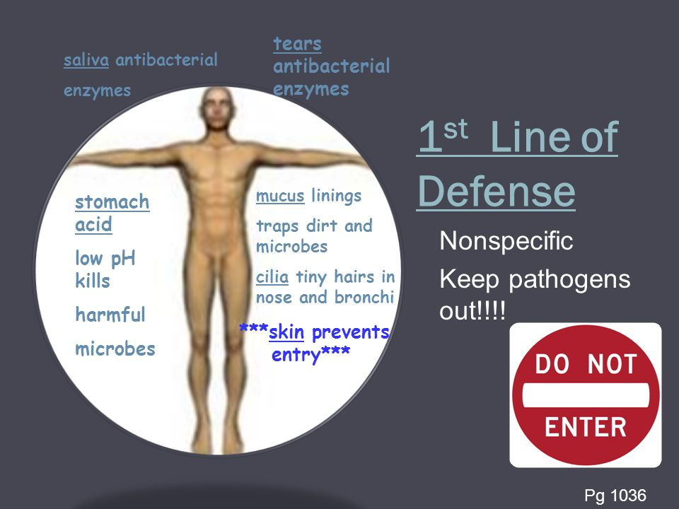 1 st Line of Defense Nonspecific Keep pathogens out!!!.