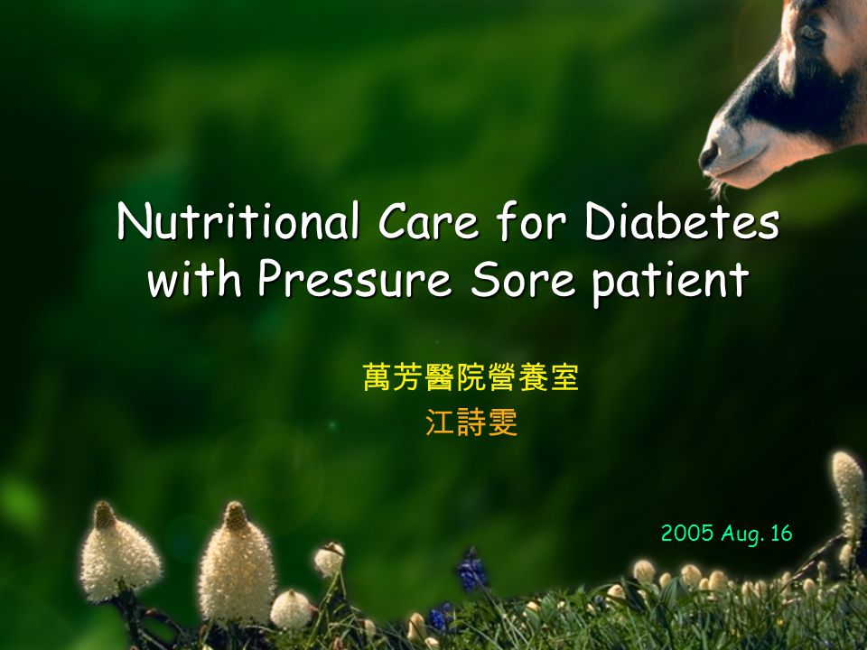 Nutritional Care for Diabetes with Pressure Sore patient 萬芳醫院營養室 江詩雯 2005 Aug. 16