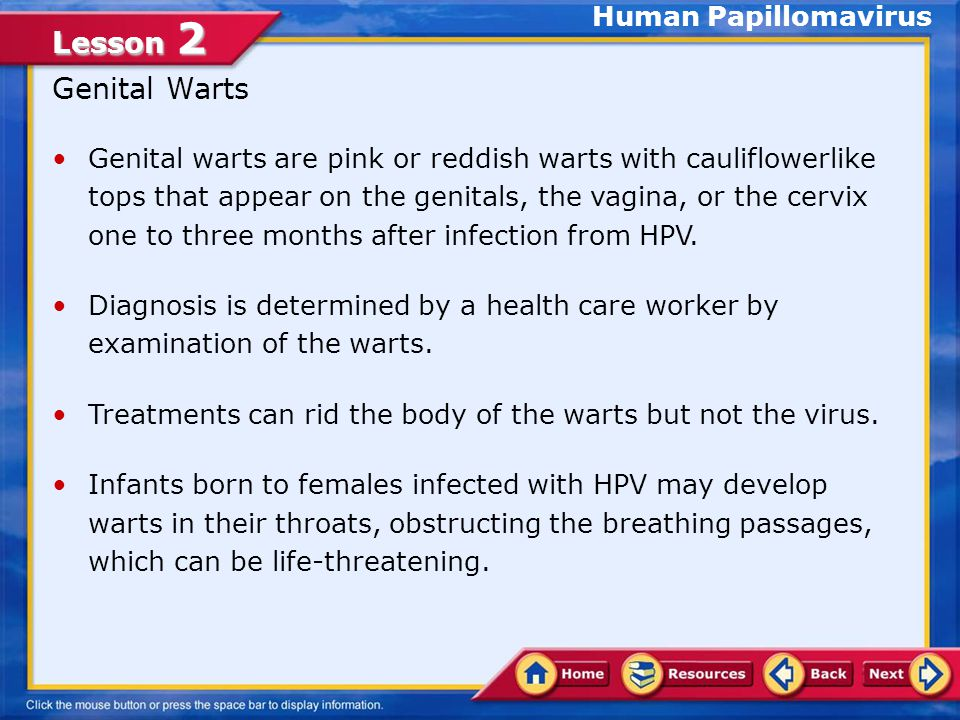 Lesson 2 An Epidemic of STDs in the United States The human papillomavirus (HPV), is considered the most common STD in the United States.human papillo