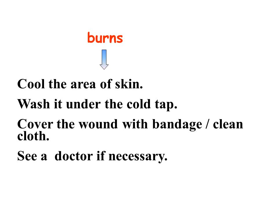 summary animal bites Wash the wound with cold running water. See a doctor as soon as possible.