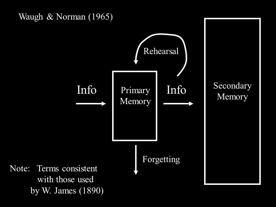 Info Primary Memory Secondary Memory Waugh & Norman (1965) Rehearsal Note: Terms consistent with those used by W.