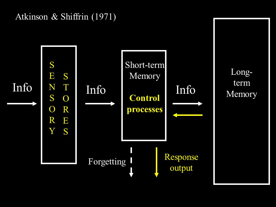 Info SENSORYSENSORY STORESSTORES Short-term Memory Control processes Long- term Memory Atkinson & Shiffrin (1971) Forgetting Response output
