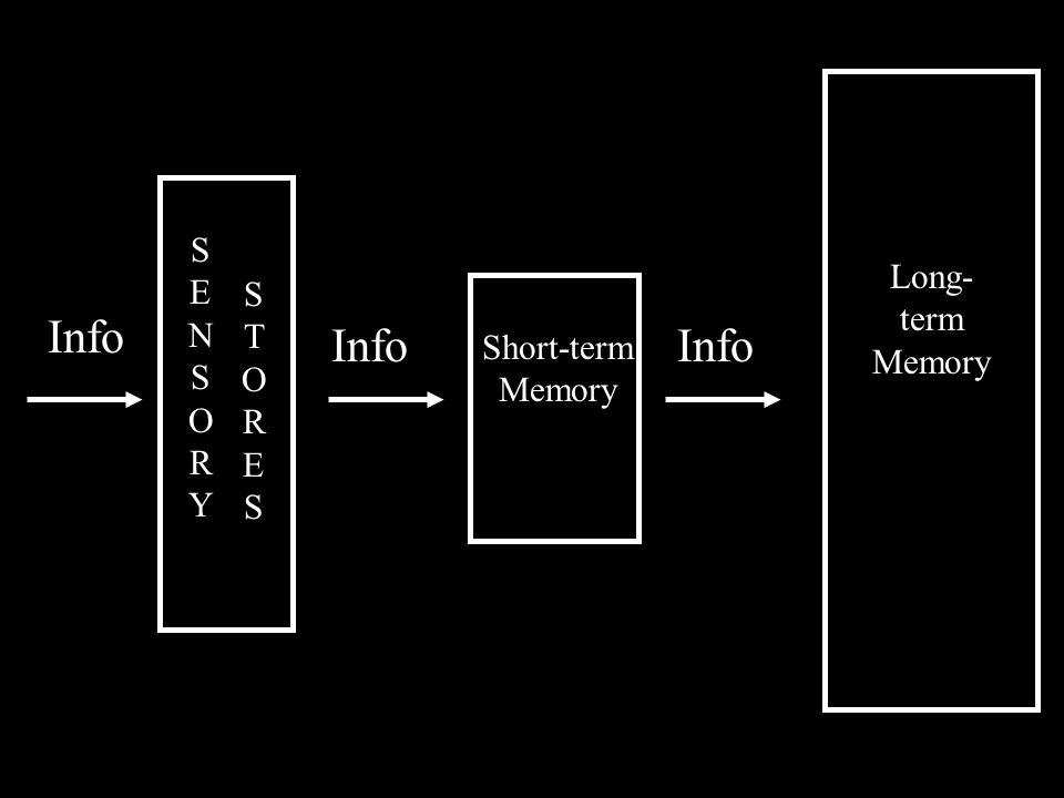 Info SENSORYSENSORY STORESSTORES Short-term Memory Long- term Memory