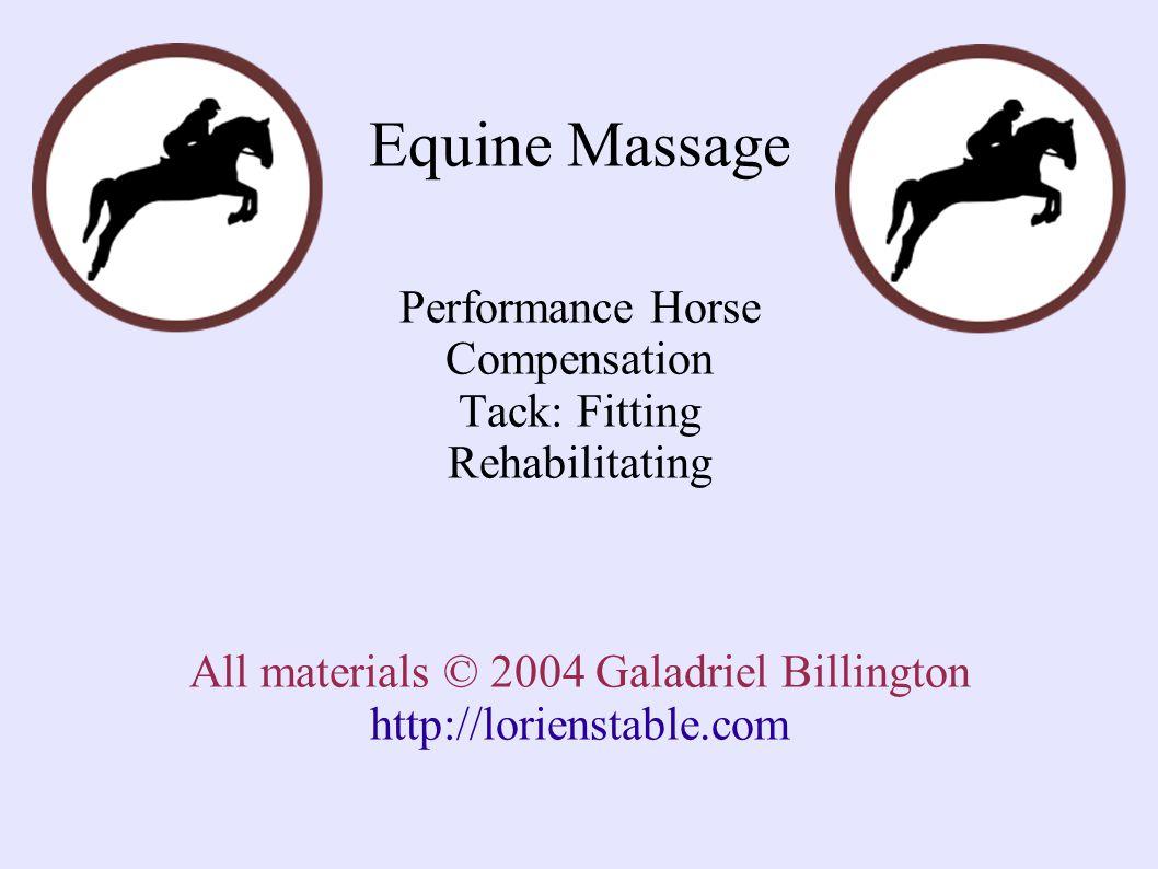 Equine Massage Performance Horse Compensation Tack: Fitting Rehabilitating All materials © 2004 Galadriel Billington http://lorienstable.com
