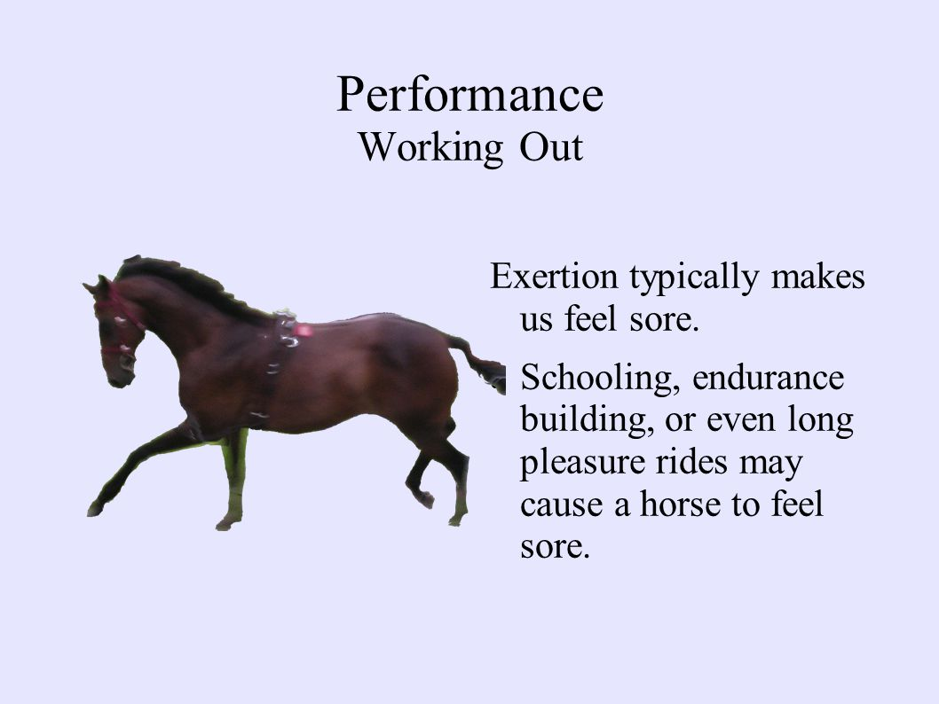 Performance Working Out Exertion typically makes us feel sore.